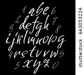 hand drawn elegant calligraphy... | Shutterstock .eps vector #663053224