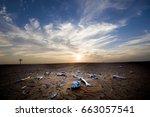 Desert Landscape With Animal...