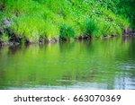 riverbank with vegetation | Shutterstock . vector #663070369
