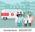 medical team.. group of doctors ... | Shutterstock .eps vector #663109729