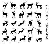 deer silhouette  vector ... | Shutterstock .eps vector #663132715