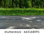 green hedge fence and  asphalt... | Shutterstock . vector #663168091
