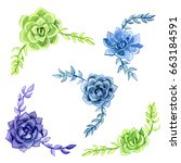watercolor succulents isolated... | Shutterstock . vector #663184591