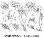 poppy flowers. set of outline... | Shutterstock .eps vector #663188809