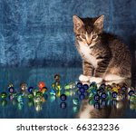 Stock photo small kitten playing with glass marbles 66323236