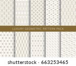 Luxury elegant geometric vector patterns pack | Shutterstock vector #663253465