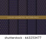 luxury geometric vector... | Shutterstock .eps vector #663253477