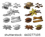 set of spices. anise star ... | Shutterstock .eps vector #663277105