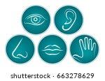 5 senses   symbols   vector | Shutterstock .eps vector #663278629