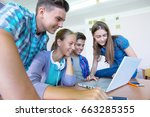 group of young students... | Shutterstock . vector #663285355