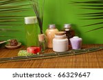 spa  take care about your body | Shutterstock . vector #66329647