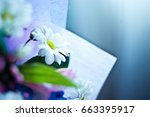 A Bouquet Of Summer Flowers