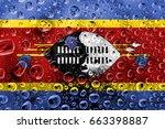flag of swaziland | Shutterstock . vector #663398887