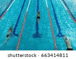 top view of three male swimmers ... | Shutterstock . vector #663414811