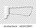 torn  snatched hole in sheet of ... | Shutterstock .eps vector #663415807