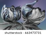 striped tulips. buds on a blue...   Shutterstock . vector #663473731