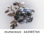 tulip and wildflowers  retro... | Shutterstock . vector #663485764