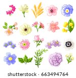 flower set | Shutterstock .eps vector #663494764