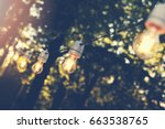 hanging decorative string...   Shutterstock . vector #663538765