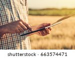 smart farming  using modern... | Shutterstock . vector #663574471
