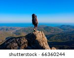 hiking in the crimea mountains | Shutterstock . vector #66360244