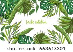 tropical hand drawn exotic... | Shutterstock .eps vector #663618301