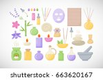 spa and aromatherapy vector... | Shutterstock .eps vector #663620167