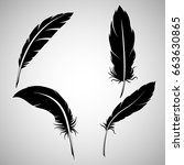 feathers on white background ... | Shutterstock .eps vector #663630865