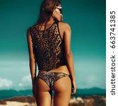 fashion woman model portrait.... | Shutterstock . vector #663741385