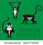 Spider Monkey Cartoon Vector...
