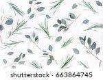 flowers composition. pattern... | Shutterstock . vector #663864745