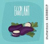 ripe vegetable fruits aubergine ... | Shutterstock .eps vector #663888019