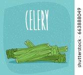 several ripe vegetables or... | Shutterstock .eps vector #663888049