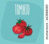 ripe fruits tomatoes vegetable  ... | Shutterstock .eps vector #663888085