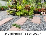 simple pathway in home garden... | Shutterstock . vector #663919177