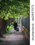 lonely old woman walking  she's ...   Shutterstock . vector #663957571
