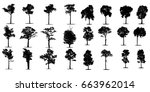 black tree silhouettes on white ... | Shutterstock . vector #663962014