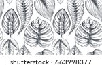 vector seamless pattern with... | Shutterstock .eps vector #663998377