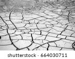 dry cracked earth background ... | Shutterstock . vector #664030711