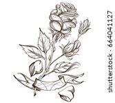 hand drawn rose. floral design... | Shutterstock .eps vector #664041127