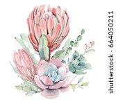 watercolor vintage succulents... | Shutterstock . vector #664050211