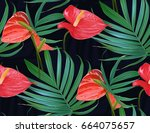 vector tropical flowers and... | Shutterstock .eps vector #664075657