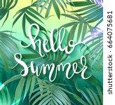 hello summer lettering. vector... | Shutterstock .eps vector #664075681
