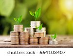 tree growing on coins stack... | Shutterstock . vector #664103407