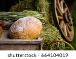 fresh bread and wheat on the...   Shutterstock . vector #664104019