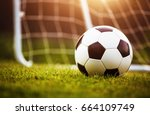 closeup soccer ball on green... | Shutterstock . vector #664109749