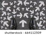 a salaman shoes standing on... | Shutterstock . vector #664112509