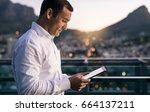 mature businessman working... | Shutterstock . vector #664137211
