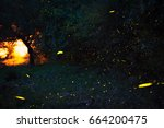 Small photo of Firefly, lightning bugs , Lampyridae family, lights in the night, insects, The Nature Show