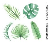 watercolor illustrations of... | Shutterstock . vector #664207357